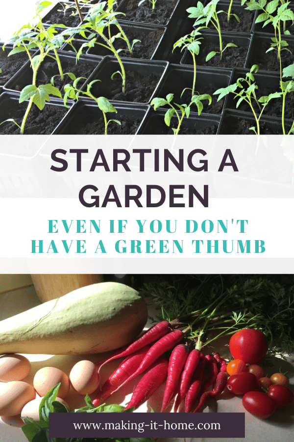 Starting A Garden When You Don't Have a Green Thumb  Making It Home