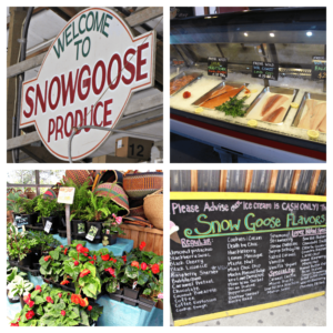 snowgoosedatefarmstand ~ Favorite Date Idea ~ Our Yearly Tradition