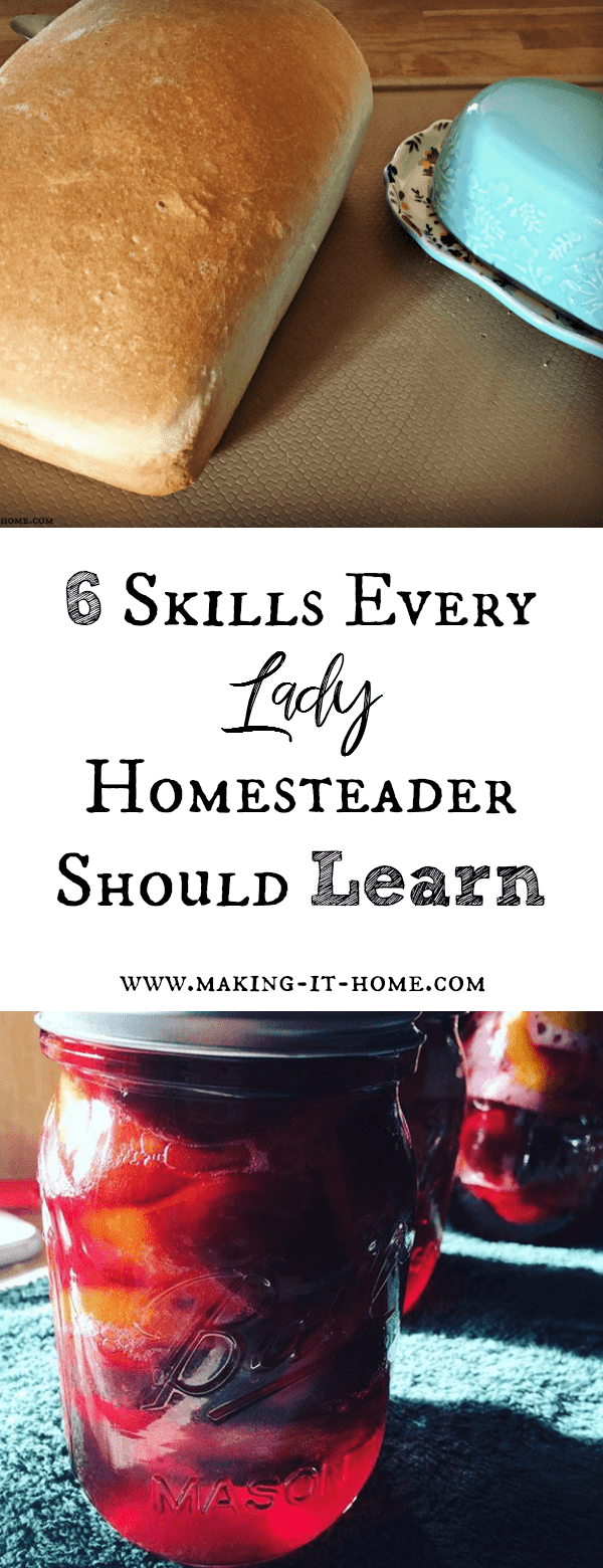 What are the 6 top skills every woman of the homestead should learn? I go over what skills are extremely valuable to have for the women on the homestead striving for a more self-sustainable life for their family.