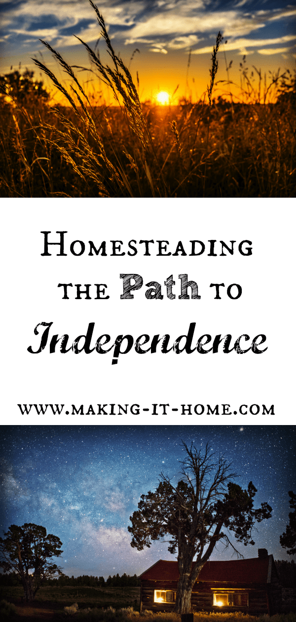 Wouldn't it be nice not to have to work for someone else for your daily needs? Even if you could just cut costs and live with more freedom? Maybe beginning homesteading is for you! Learn how you can create a life that gives you the freedom we all crave!