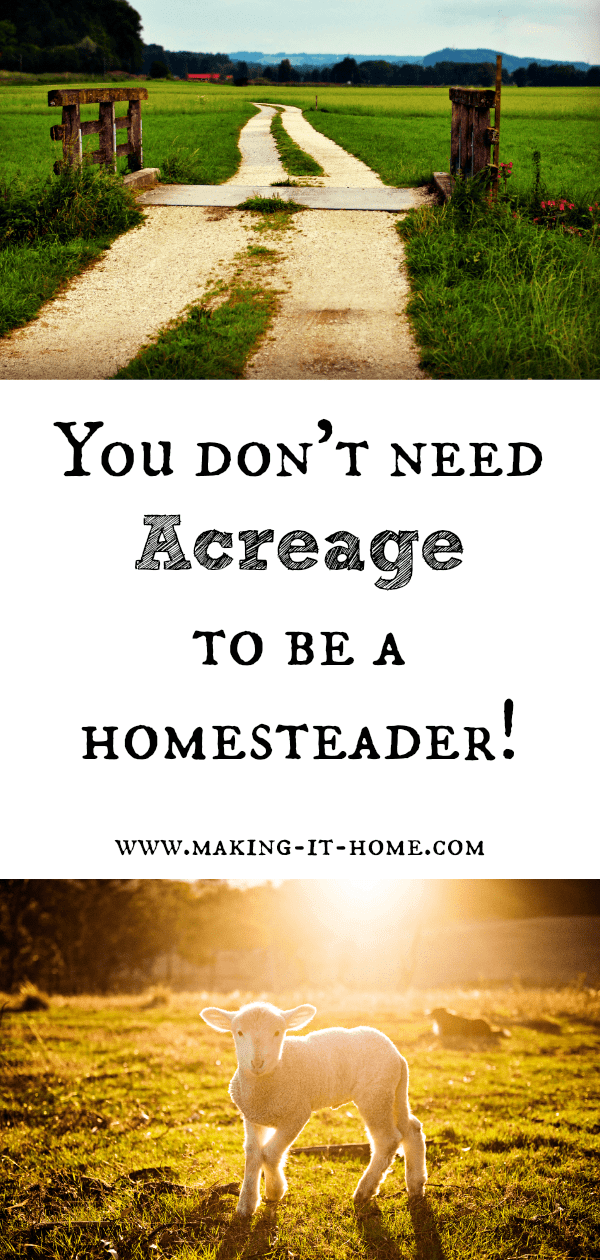 Think you need tons of acreage to be considered a homesteader? It's just not true. Homesteading these days is really just a state of mind. It's really all about self-sustainability and being in more control of your family's well-being. Find out more about the homesteading state of mind and maybe decide it fits you perfectly!