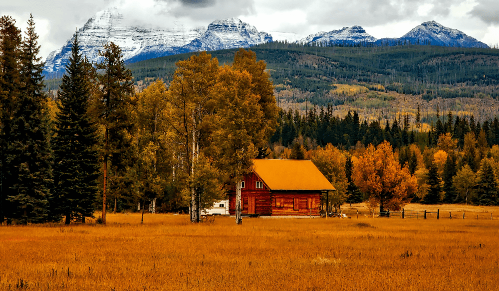 You Don't Need Acreage to Be a Homesteader