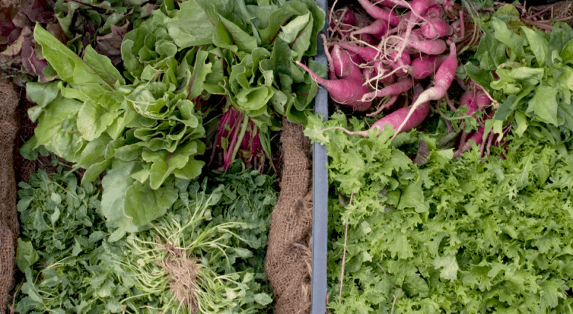 Organic Produce Delivery vs CSA ~ Which is Better?
